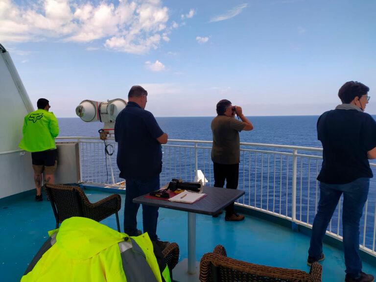 Vuelven los avistamientos de fauna marina a bordo